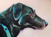 black dog painting