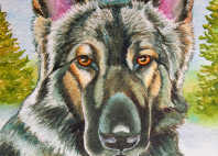 shiloh shepherd dog paintings com